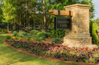 SHANNON LAKES - ATL by Crown Communities