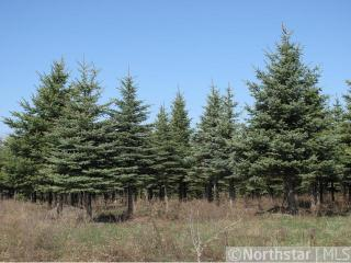 1634 Majestic Pines Trail, Afton MN
