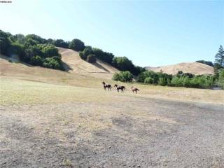 8928 Crow Canyon Road, Castro Valley CA