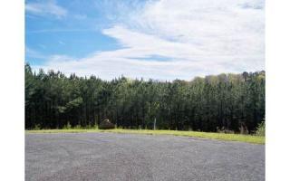 LT 9 Lt 9 Pine View Trail, Ellijay GA
