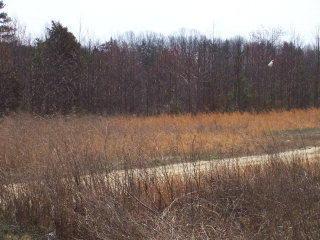 1.32ac Wilson Memorial Trail, Vernon Hill VA