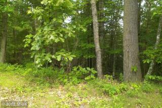 238 Bass Wood Lane, Mount Jackson VA