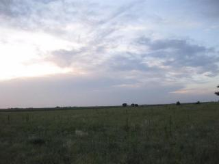 County Road J, New Home, TX 79383