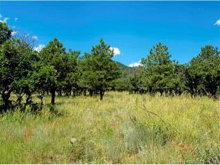 5 Oakmoor Heights, Colorado Springs CO