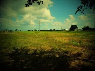 Fm 1164, East Bernard TX