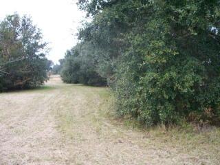 7105 Magnolia Springs Highway, Foley AL