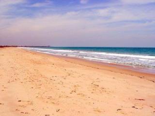 1595 Smugglers Cv, Vero Beach, FL 32963