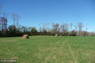 Griffinsburg Road, Culpeper VA