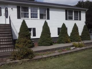 851 Sheehan Rd, East Meredith, NY 13757