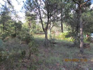 18 Fossil Creek Rd, Strawberry, AZ 85544