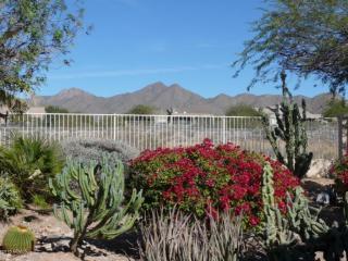 11946 E Becker Ln, Scottsdale, AZ 85259