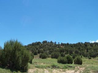 W Shumway, Shumway, AZ 85939