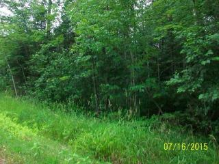 Diane Ln, Ringle, WI 54471