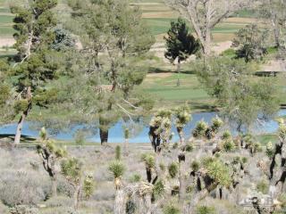 Yucca Trail, Yucca Valley CA