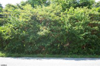 151 Pine Avenue, Egg Harbor Township NJ