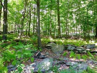 State Rd, Andes, NY 13731