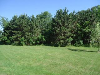 Lot 4 162nd Ave, Hager City, WI 54014