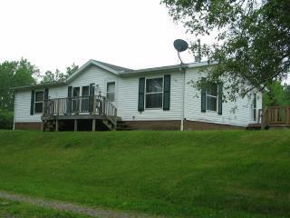 9306 Parkhurst Hwy, Addison, MI 49220