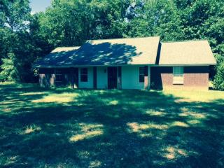 19 County Rd #130, Louin, MS 39338