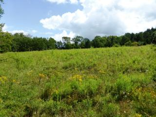 1978 North Rd, Bloomville, NY 13739