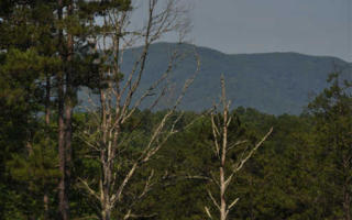Lot 51 Hideaway Fls, Copperhill TN