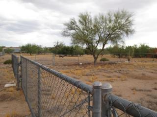 6281 North Brushtail Lane, Tucson AZ