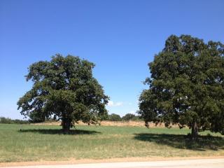 1401 Post Oak Pl, Westlake, TX 76262