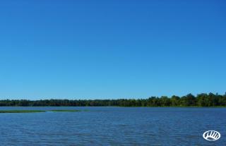 Black Warrior Bay Waterfront Lot, Akron, AL 35441