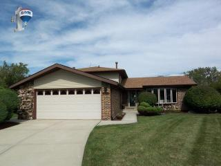 13911 Citation Drive, Orland Park IL