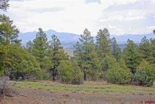303 Kelseya Circle, Pagosa Springs CO