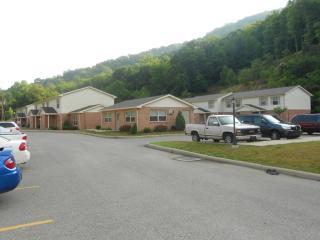 409 Pebble Dr, Moundsville, WV 26041