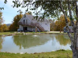 408 Old Turnpike Rd, Mount Holly, VT 05758
