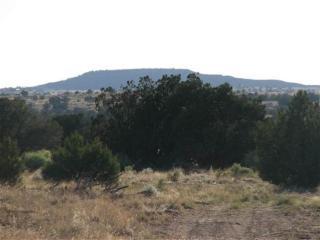 2993 North Old Woodruff Road, Snowflake AZ