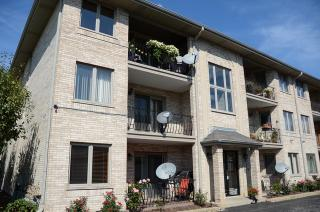 9211 S Roberts Rd #1B, Hickory Hills, IL 60457