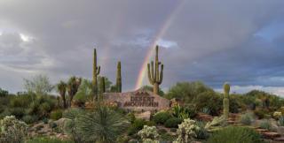 10312 E Nolina Trl, Scottsdale, AZ 85262