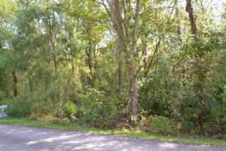 Bayou Road, Bay Minette AL