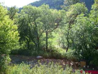 22987 Highway 145, Dolores, CO 81323