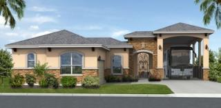 Retama Village at Bentsen Palm by Bentsen Palm Development