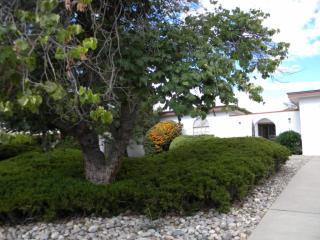 12440 Chelwood Trail Northeast, Albuquerque NM
