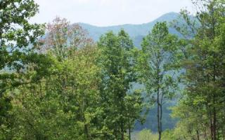 LOT 3 3 Trails End, Young Harris GA