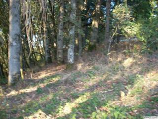 Lot 3501 Rock View Dr, Turner, OR 97392