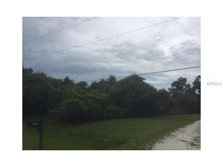 Mitchelwood Ct #250, Saint Cloud, FL 34771
