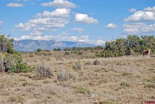 789 Archuleta Mesa Place, Pagosa Springs CO
