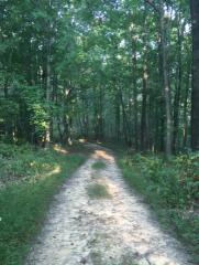 14 Mile, Ranger, WV 25557
