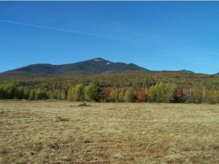 Whiteface Intervale, Sandwich, NH 03259