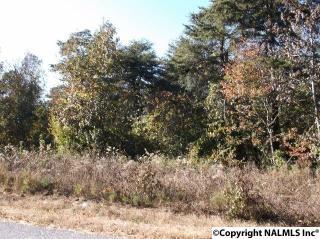 County Road 70, Leesburg AL