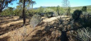 10 Acres Green Mtn Rd, Round Mountain, CA 96084