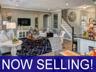 Lakeside Park - Georgetown by Ryland Homes
