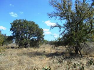 LOT 100 100 RIVER PARK Dr, Llano, TX 78643