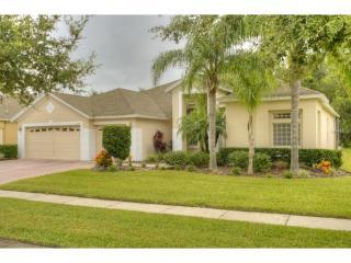 17359 Emerald Chase Drive, Tampa FL